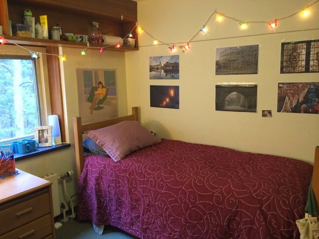 Sara Laughed's sophomore dorm room!