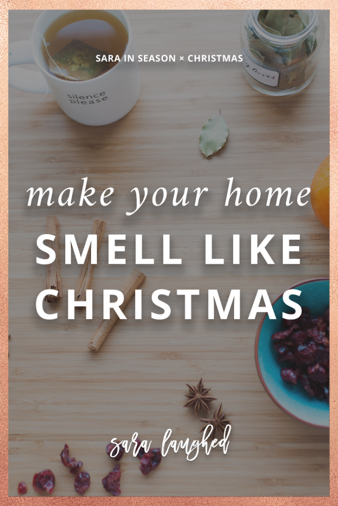 Make your home smell like Christmas with this easy stovetop recipe!